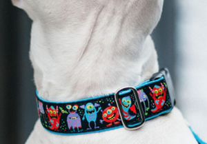 "Image of IncrediBullStella Custom Wide 1"" Collar (Ellie's Collar)"