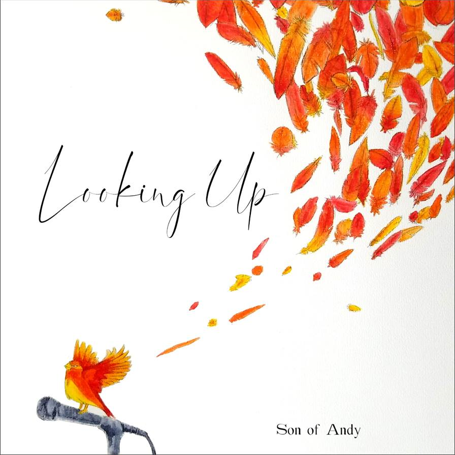 """Image of Son of Andy """"Looking Up"""" Signed CD"""