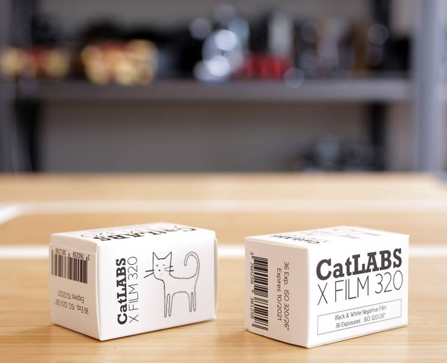 Image of CatLABS X FILM 320 35mm BW Negative Film (36 exp.)