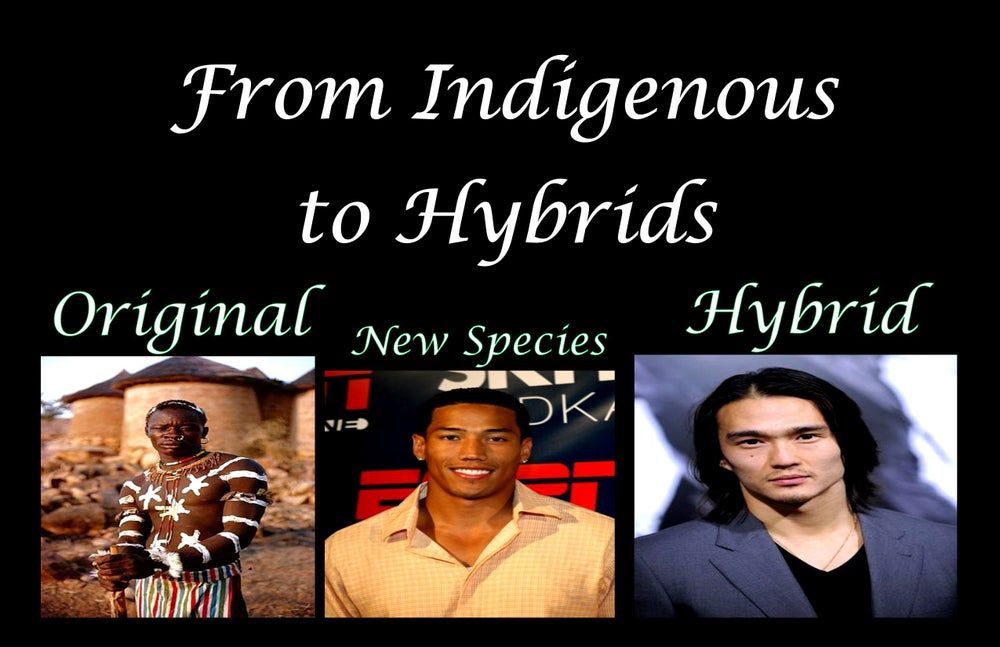 Image of The Tales of the original people and the Hybrids DVD