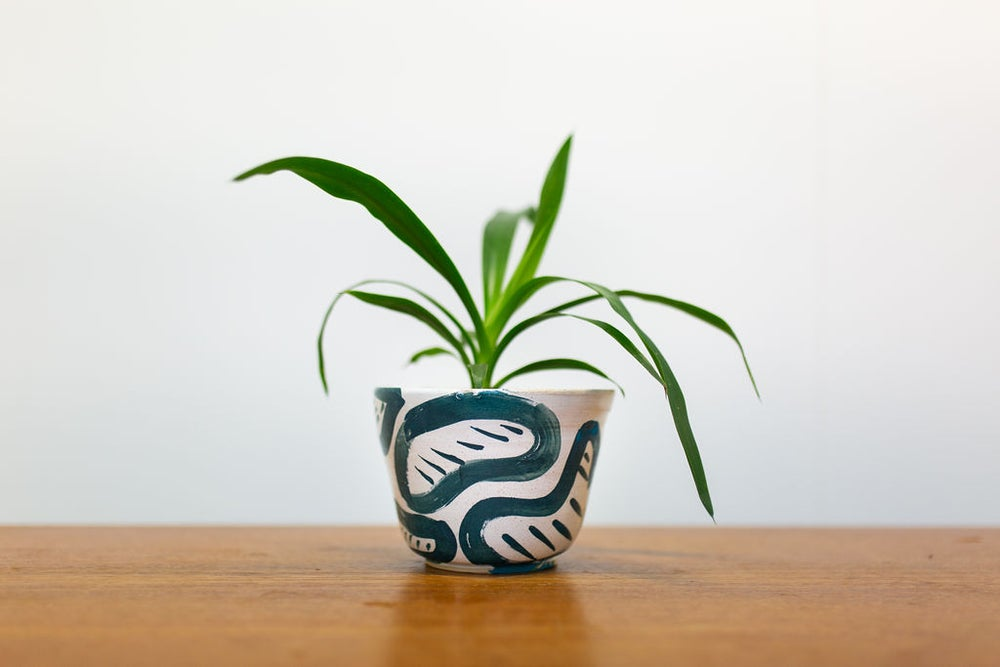 Image of Blue and White Bean small Planter
