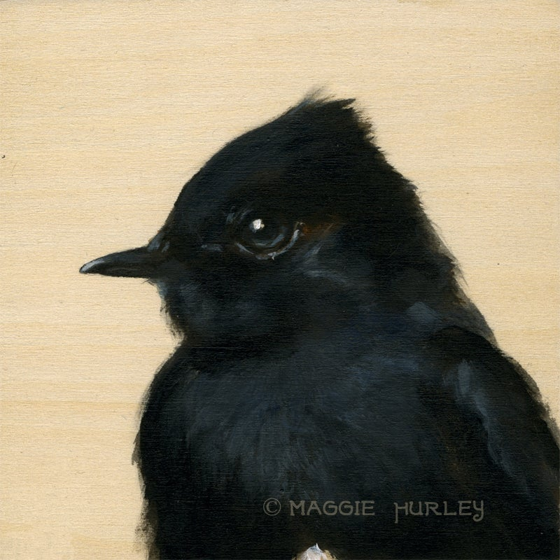Image of Phoebe Bird Print on Wood by Maggie Hurley