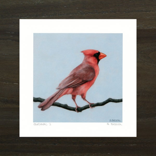 "Image of ""Cardinal I"" Art Print"