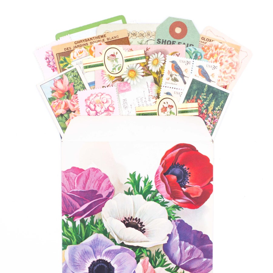 Image of Anemone Seed Packet with Spring Ephemera