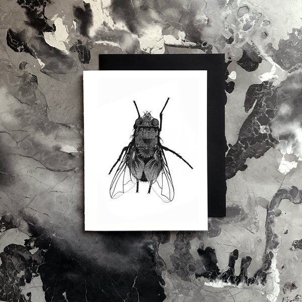 Image of Fly Card / Small Print