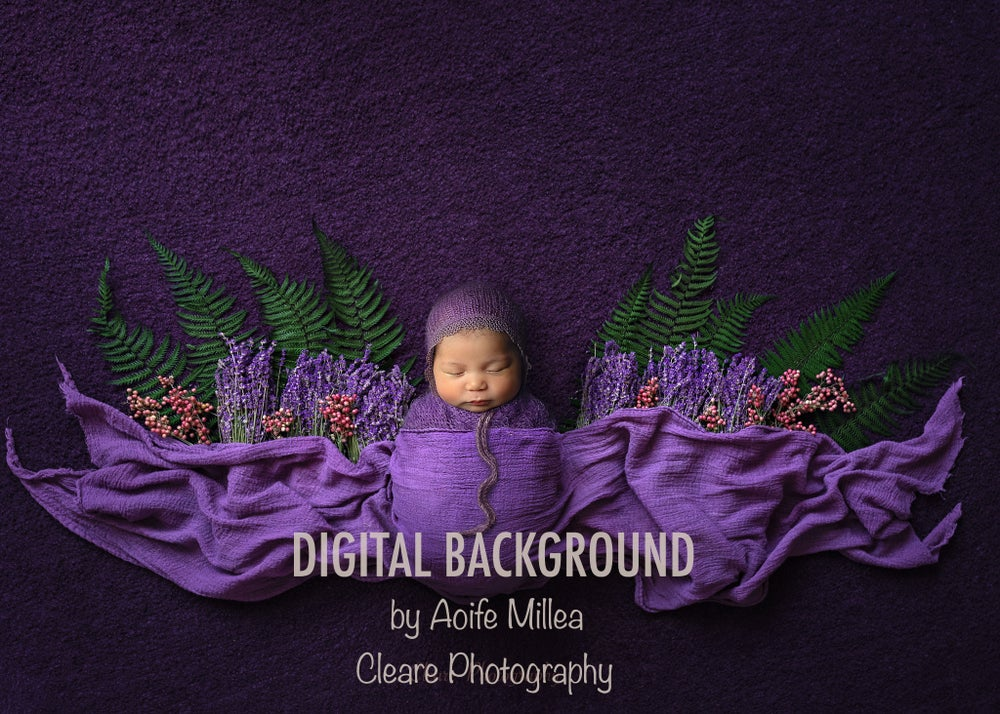 Image of lavender and fern layered newborn digital backdrop