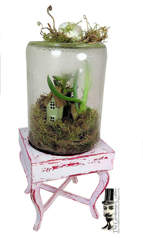 Image of The Terrific Terrarium Kit