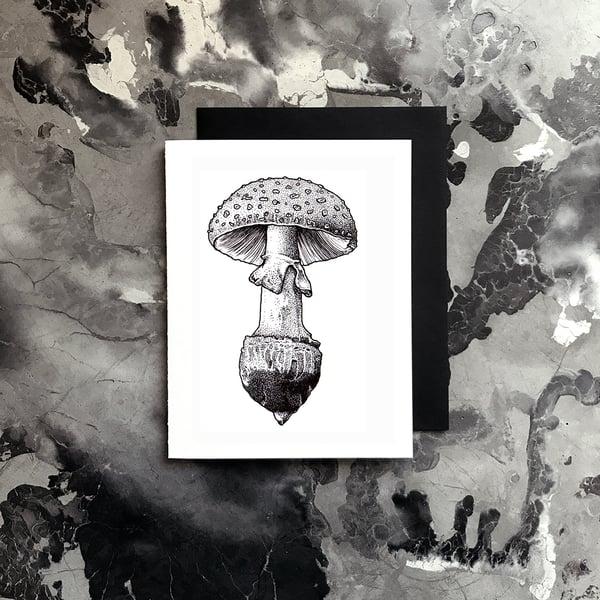 Image of Mushroom Card / Small Print