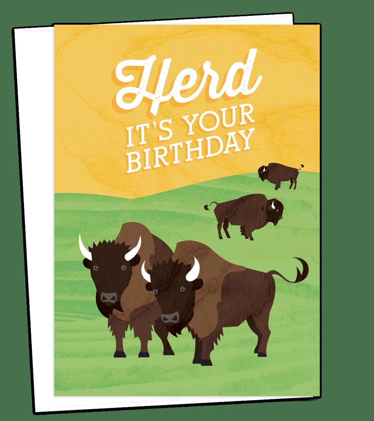 Image of Bison Herd