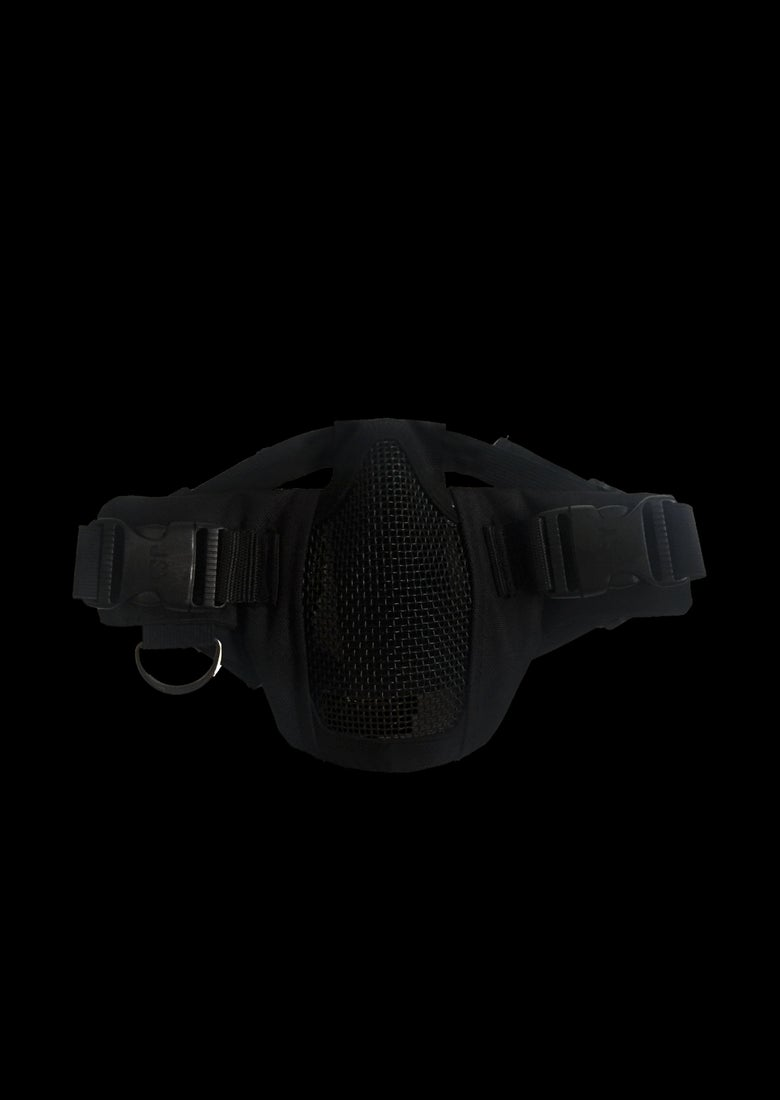 Image of BANE MASK