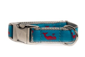 Image of Whale on Turquoise in the category  on Uncommon Paws.
