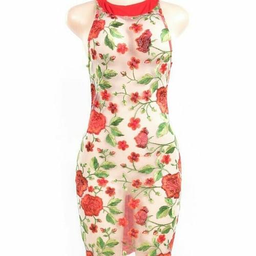 Image of Red Rose Sheer Dress