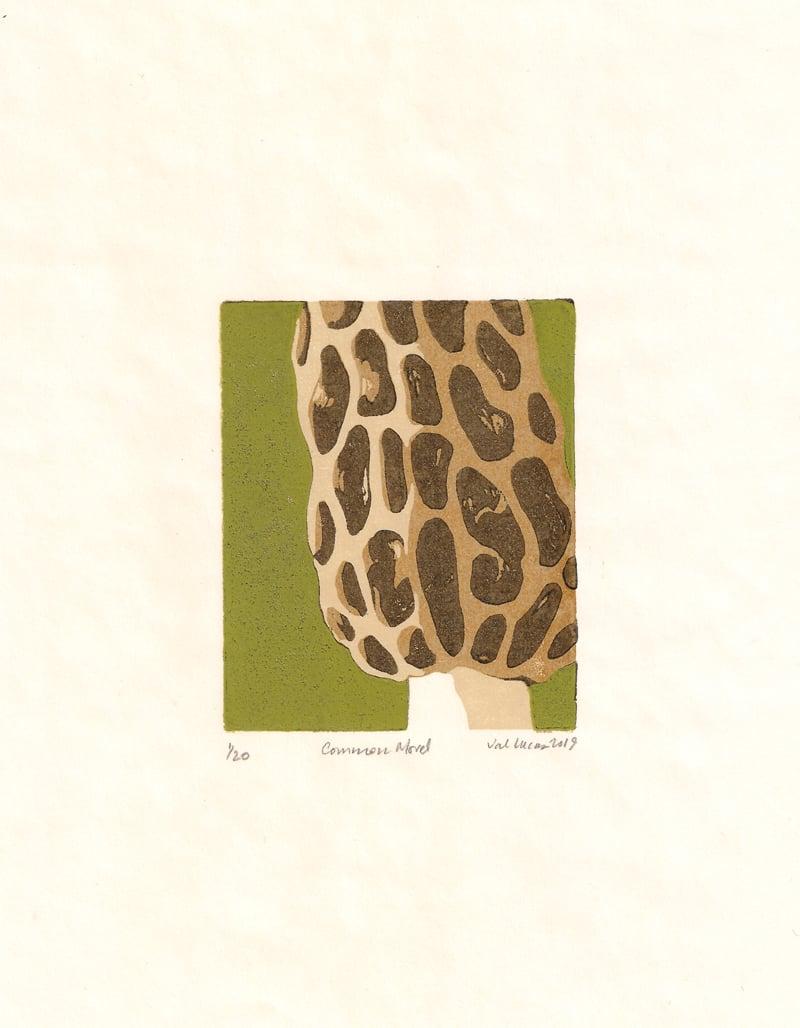 Image of Morel Mushroom Print