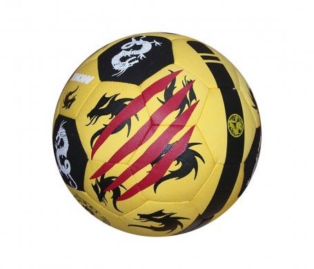 Image of Bruce Lee Freestyle Ball