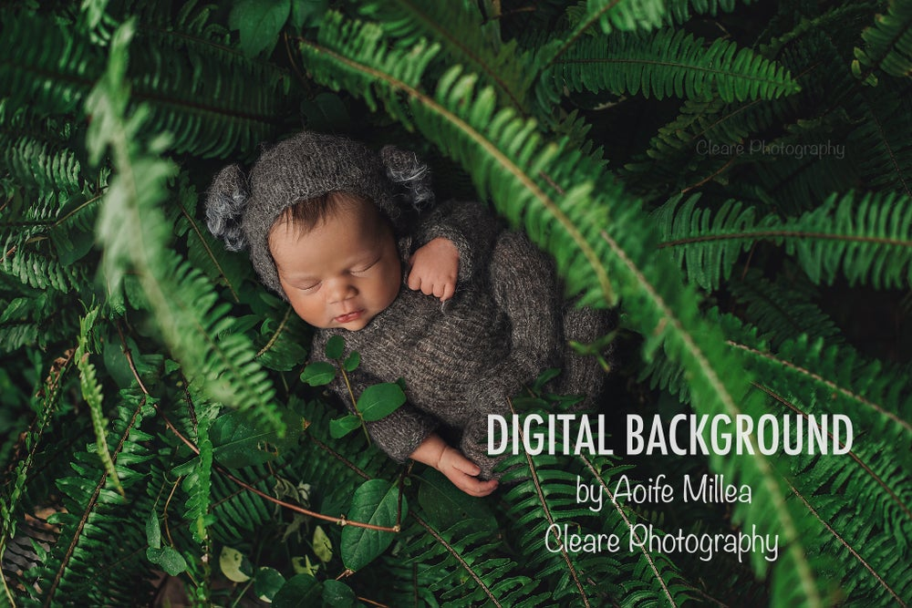 Image of forest ferns newborn layered digital backdrop