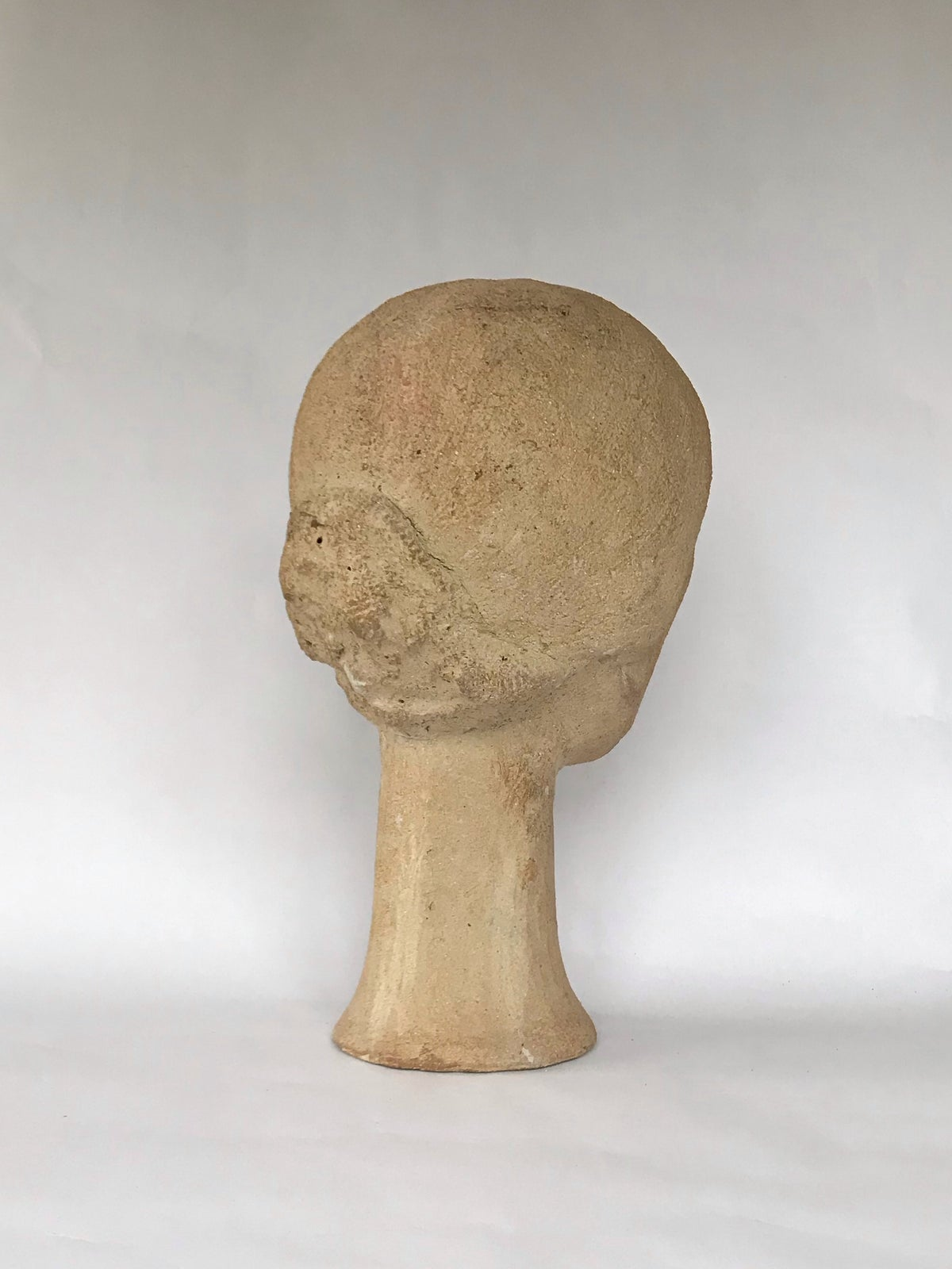 Image of Head; Virginia