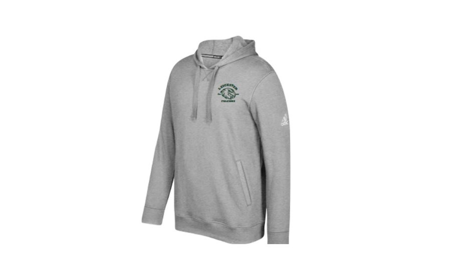 Image of Adidas Grey Falcons Hoodie