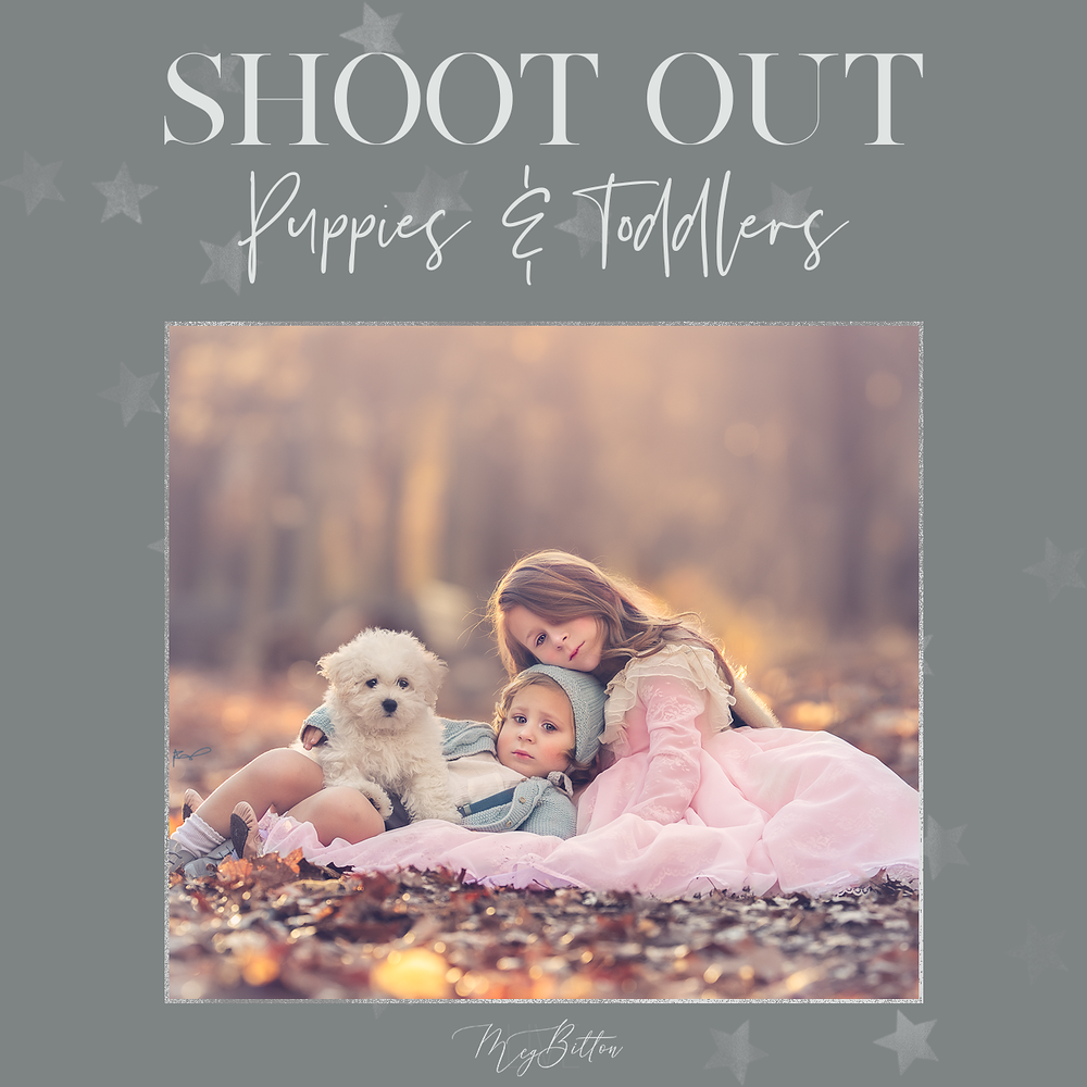 Image of Puppies and Toddlers Shoot Out
