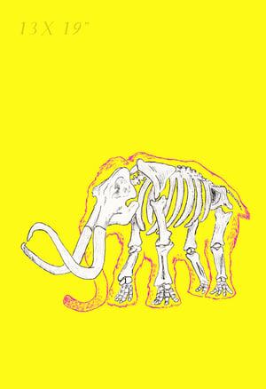 Image of Yellow Mammoth - Skin and Bone series