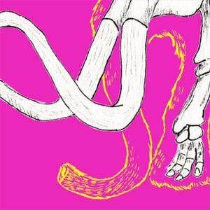 Image of Mammoth - Skin and Bone series