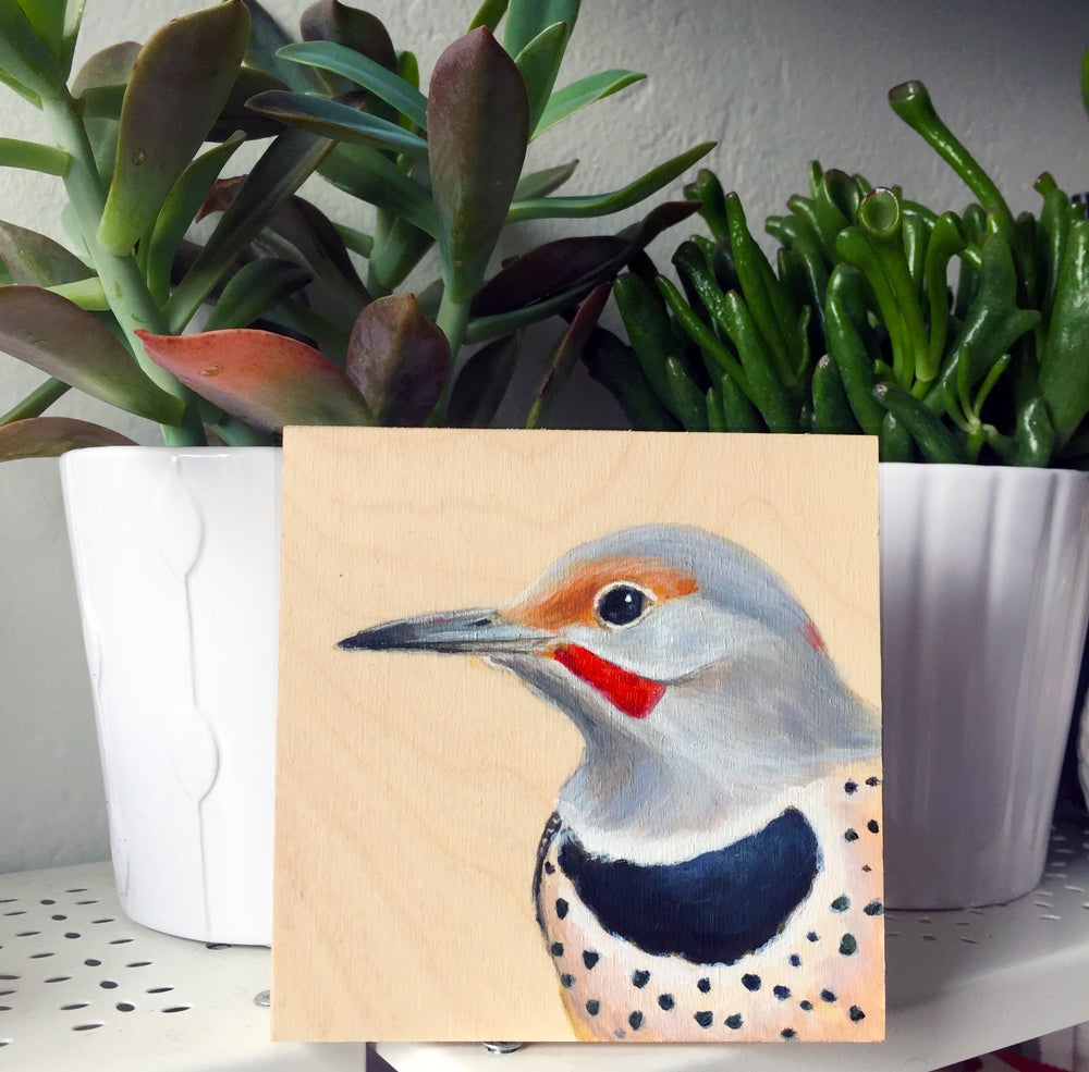 Image of Northern Flicker Bird Print on Wood by Maggie Hurley