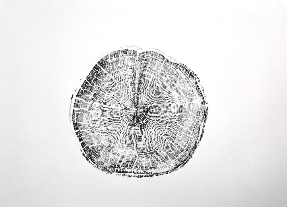 Image of stonefruit