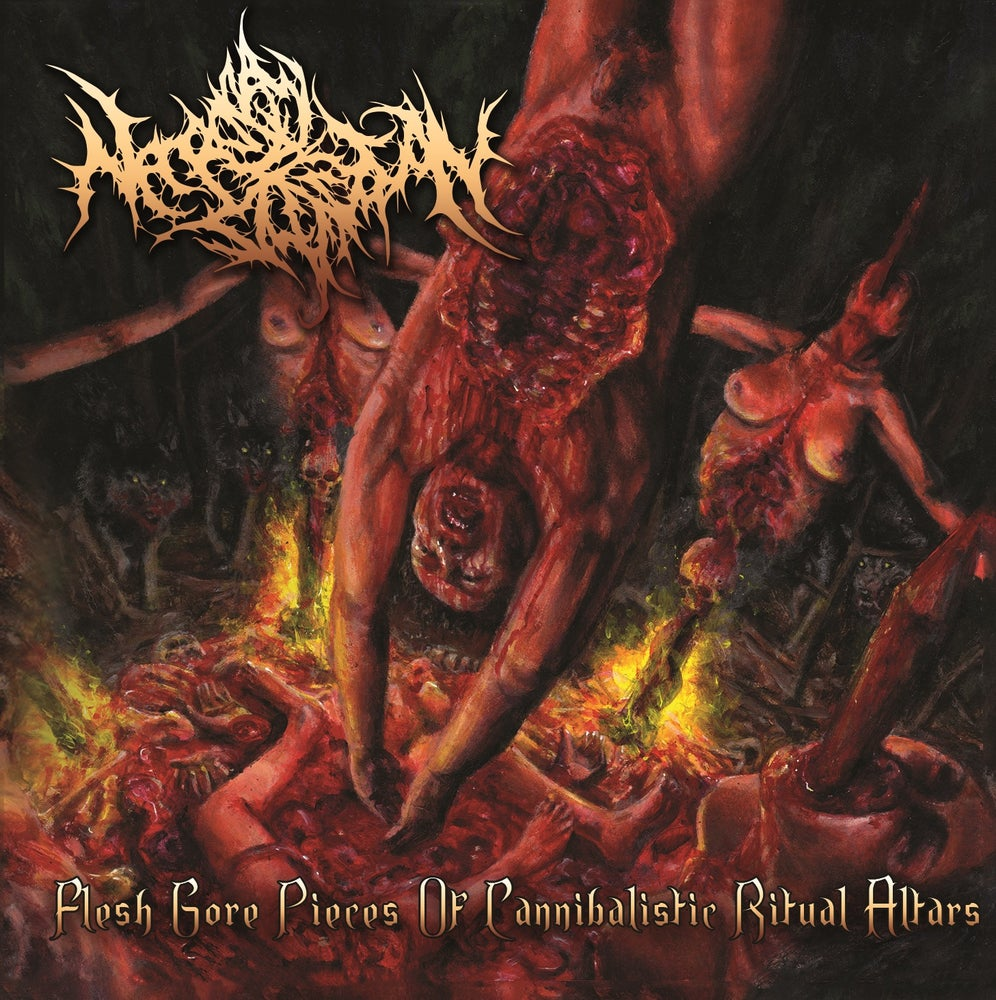 Image of NECROPSY DEFECATION - Flesh Gore Pieces Of Cannibalistic Ritual Altars CD