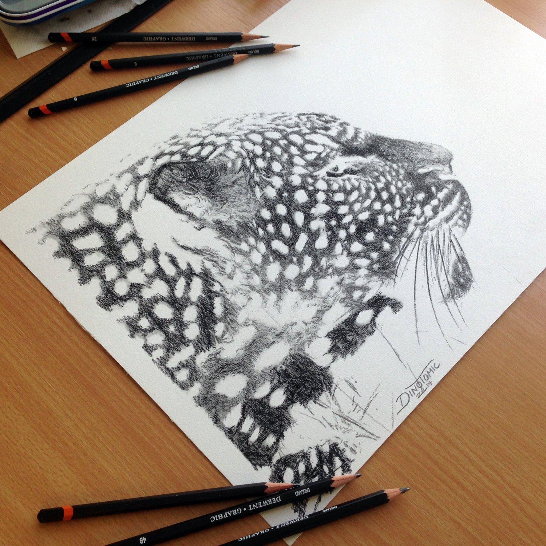 Image of 83# Inverted Jaguar
