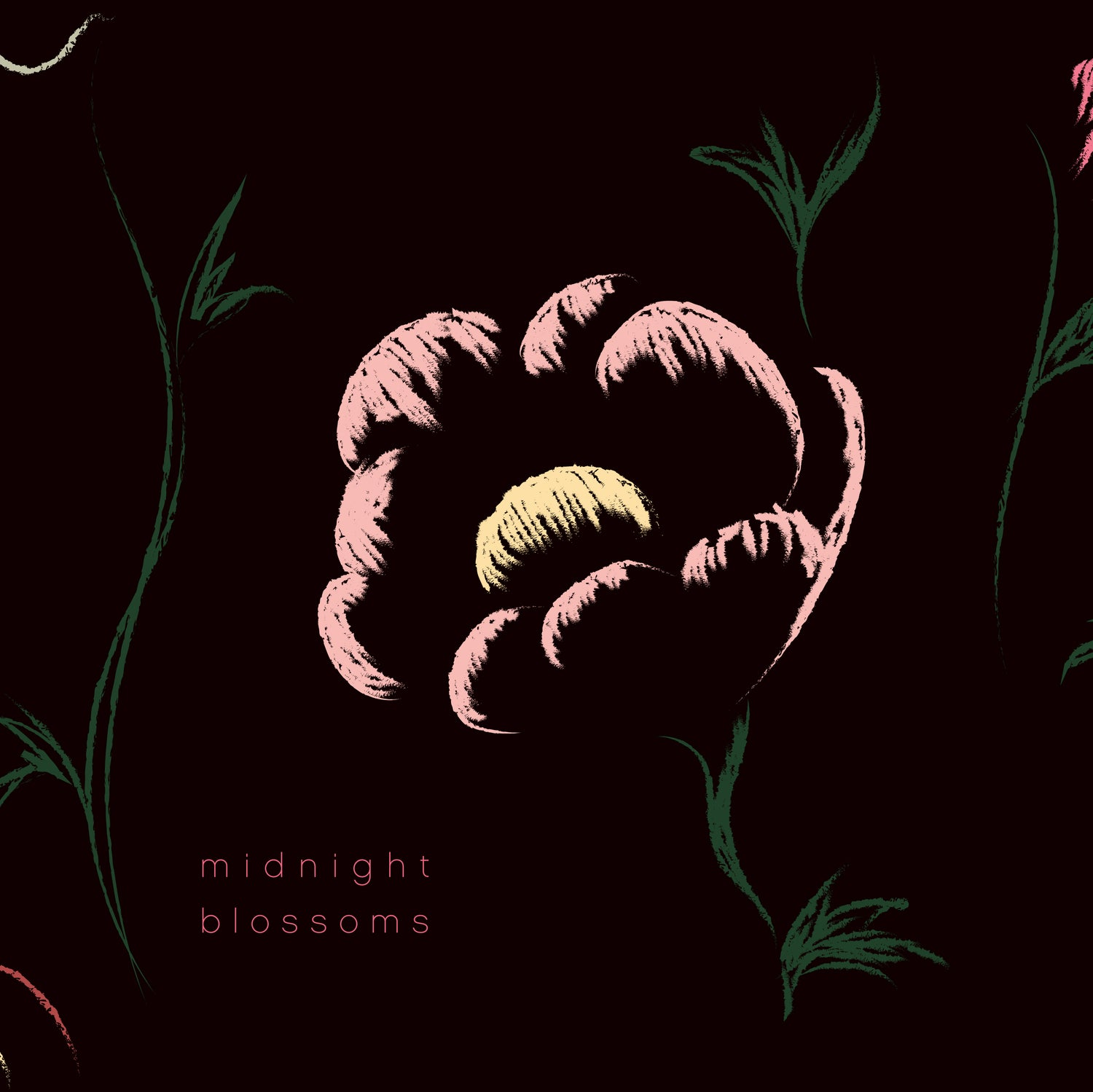 Image of Midnight Blossoms