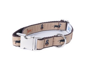 Image of Dachshund - Dog Collar in the category  on Uncommon Paws.