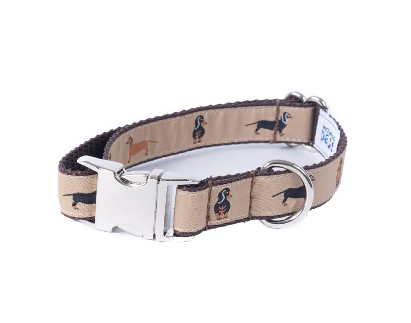 Dachshund - Dog Collar