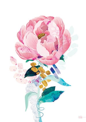 Image of Pink Peony - Art Print