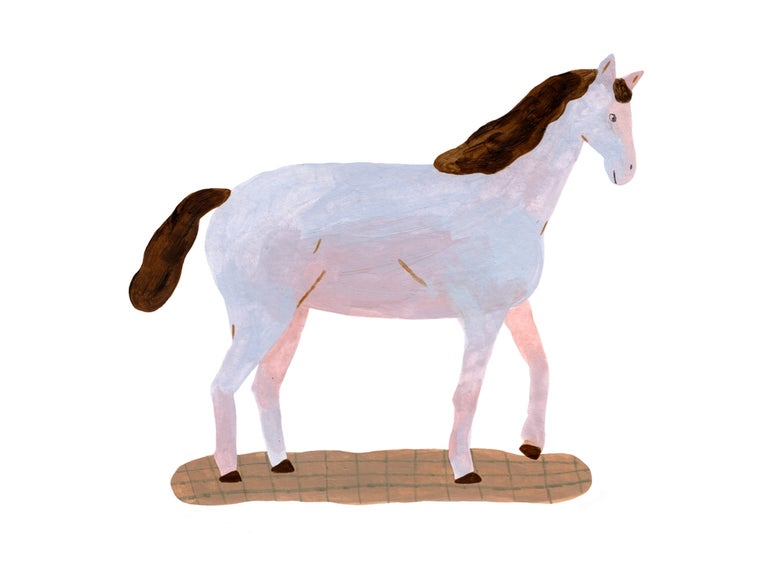 Image of Horse