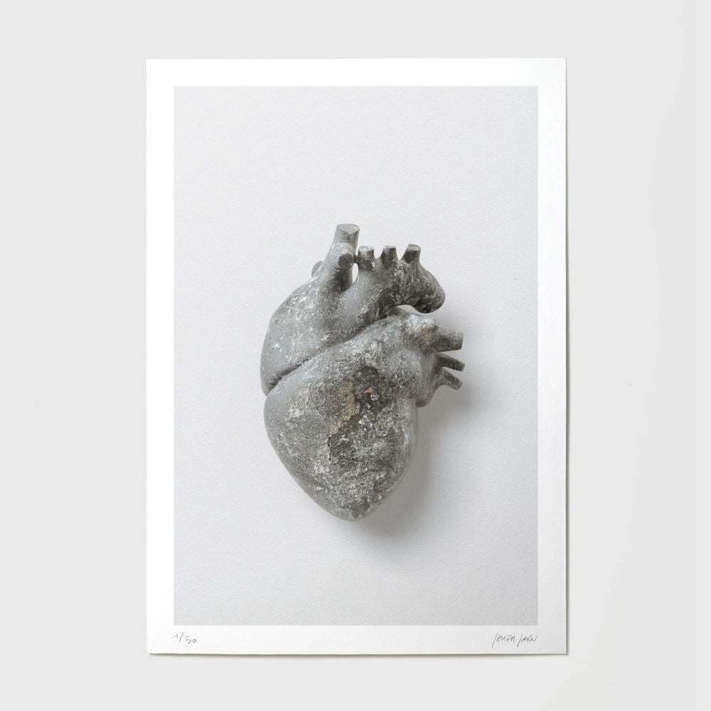 Image of Heart of Stone