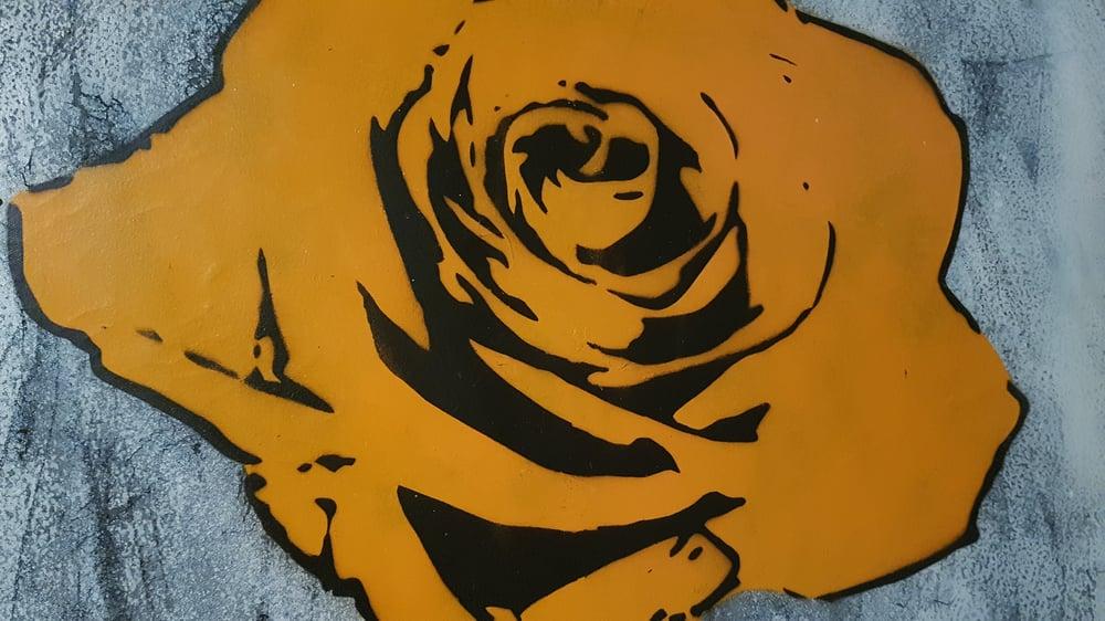 Orange rose BIG