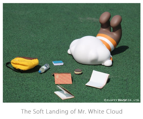 Image of The Soft Landing of Mr. White Cloud