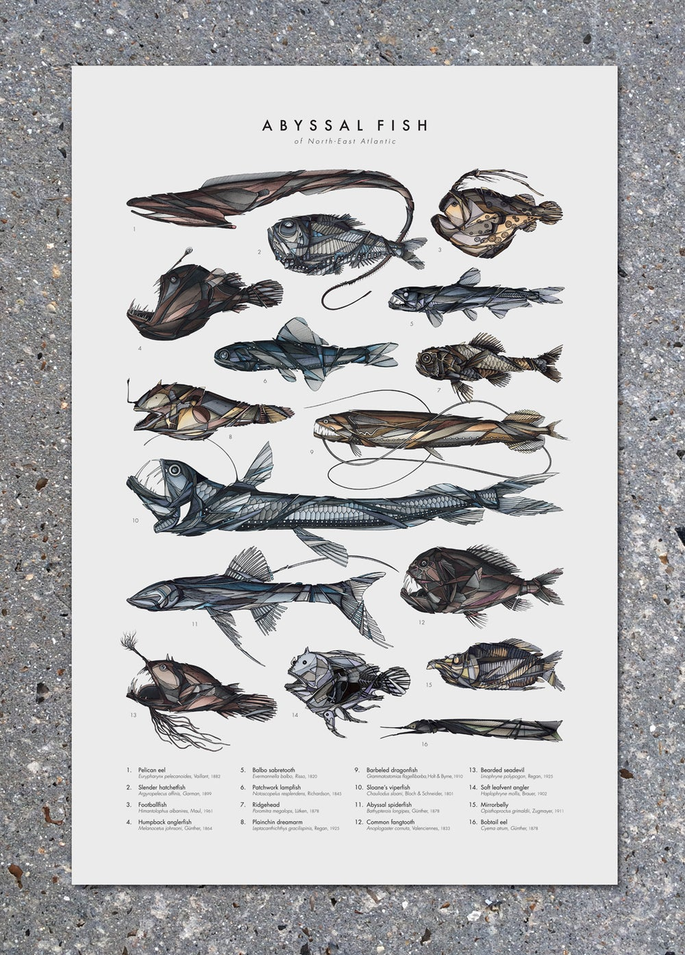 """Image of Poster """"Abyssal Fish"""""""