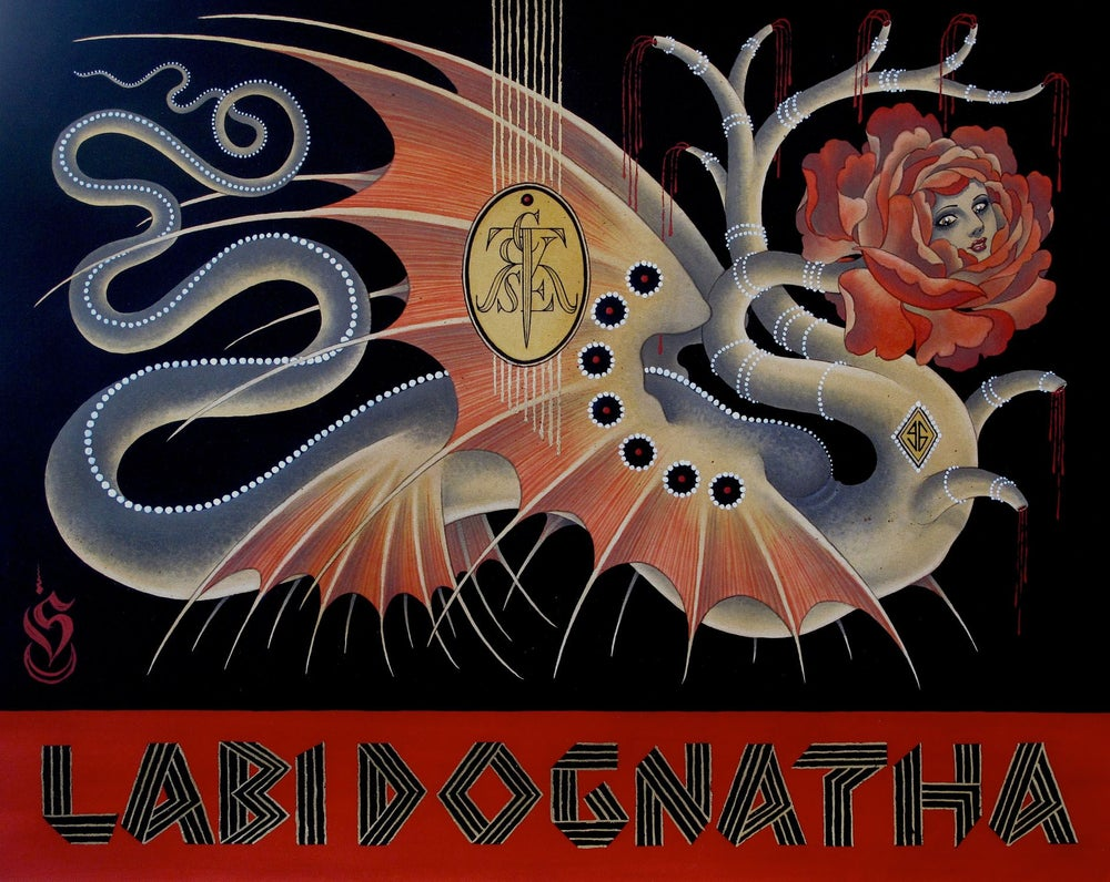 Image of LABI DOGNATHA