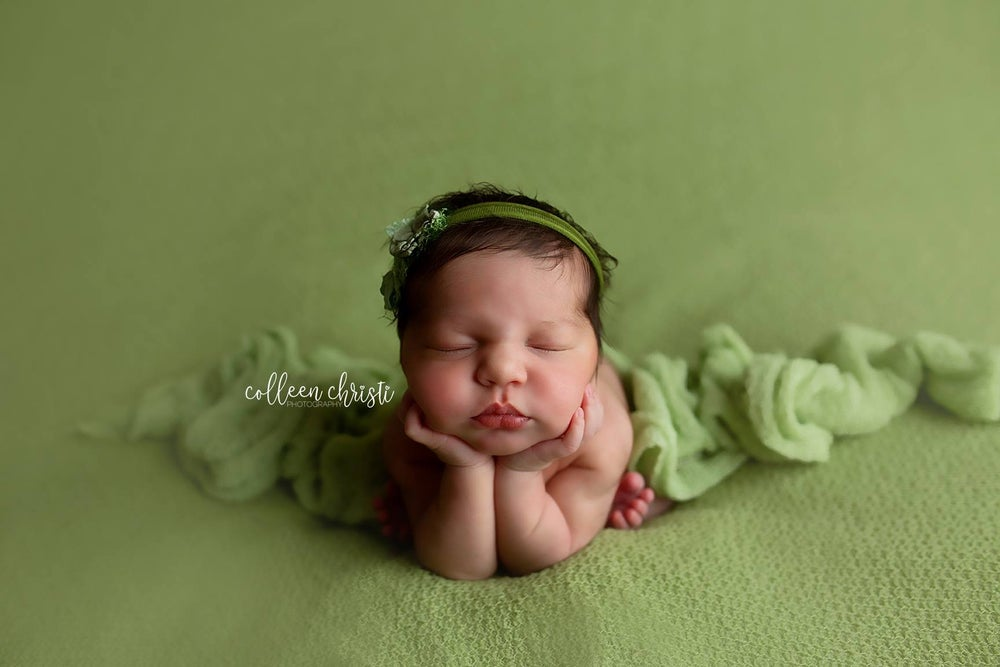 Image of Newborn Posing Workshop