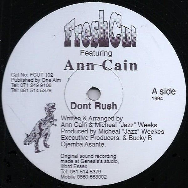 Image of FRESH CUT feat ANN CAIN - DON'T RUSH 12""
