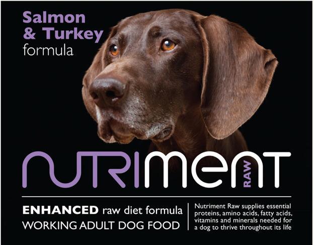 Image of Salmon & Turkey Formula - Adult