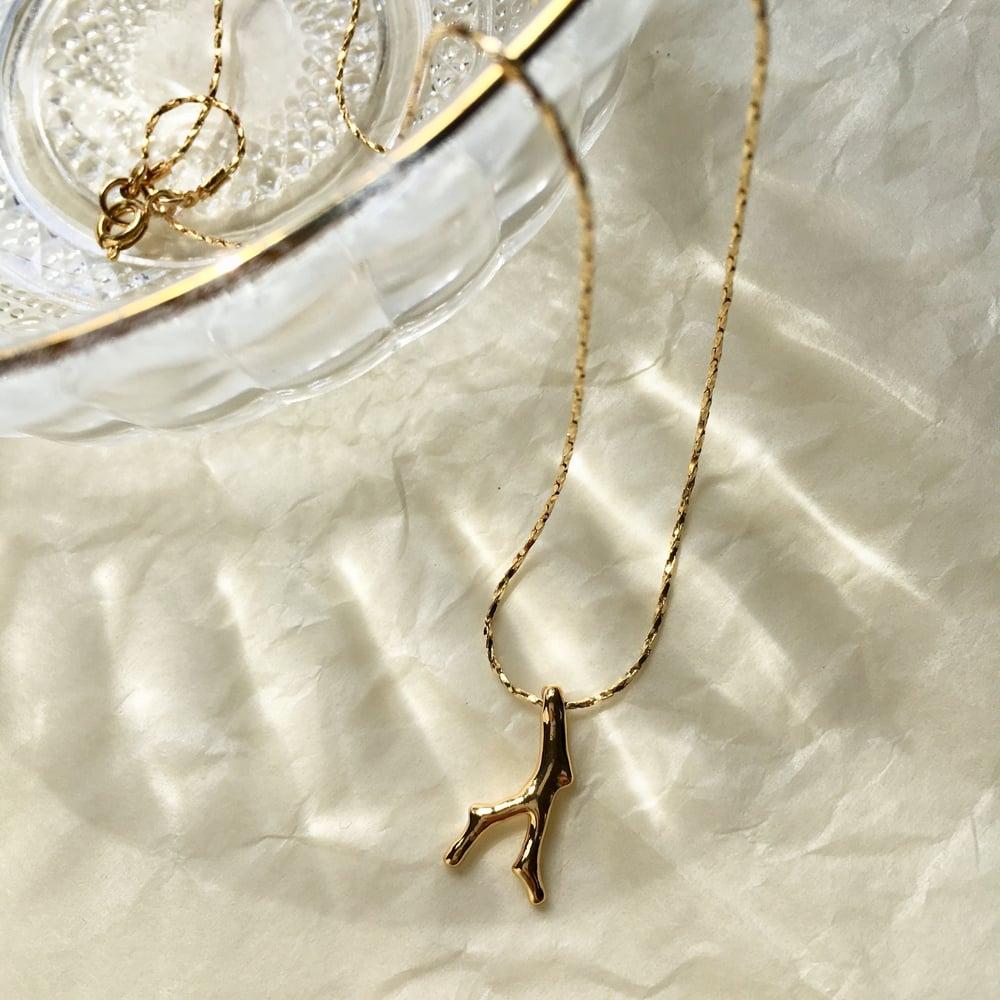 Image of Petit corail