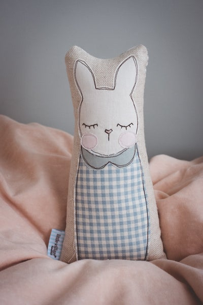 Image of Blue gingham bunny with duck egg collar