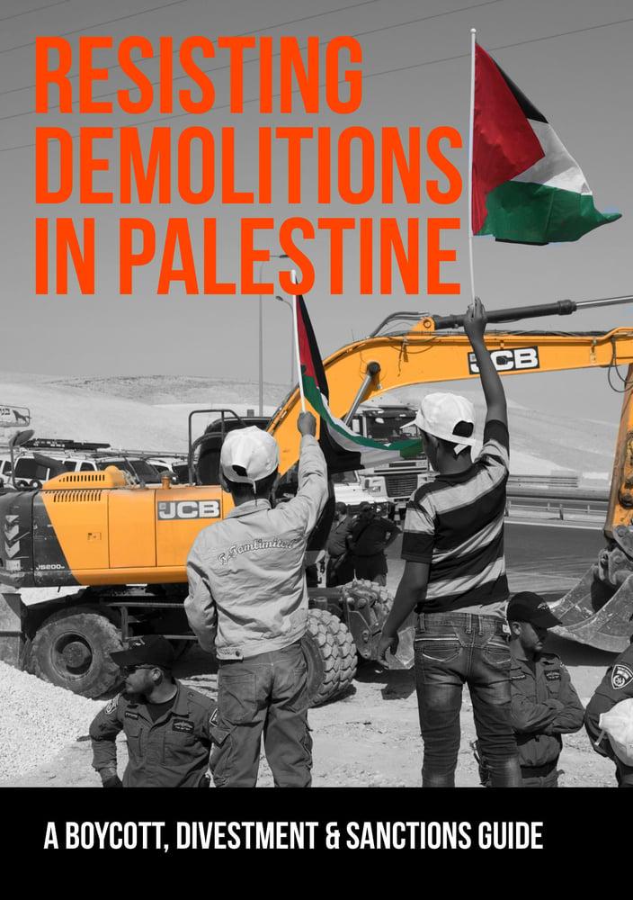 Image of Resisting Demolitions in Palestine