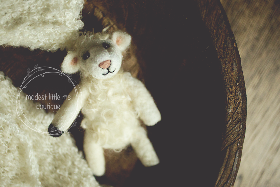 Image of Mary Had A Wooly Lamb