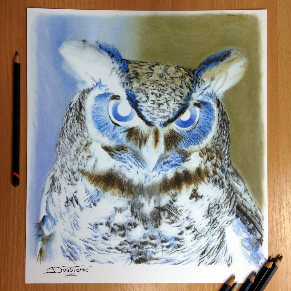 Image of #100 Inverted Owl