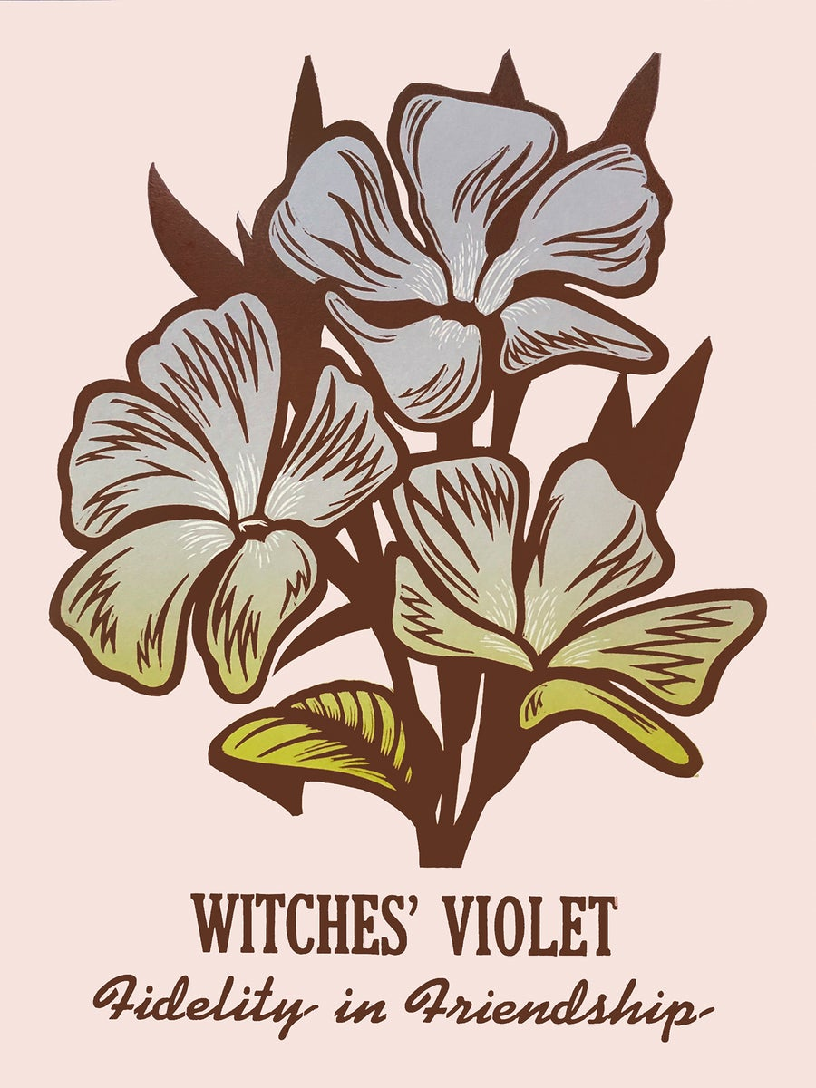 Image of Witches' Violet