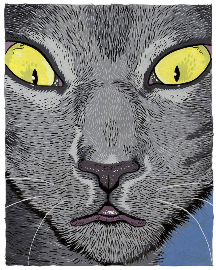 Image of Henk the cat giclee print