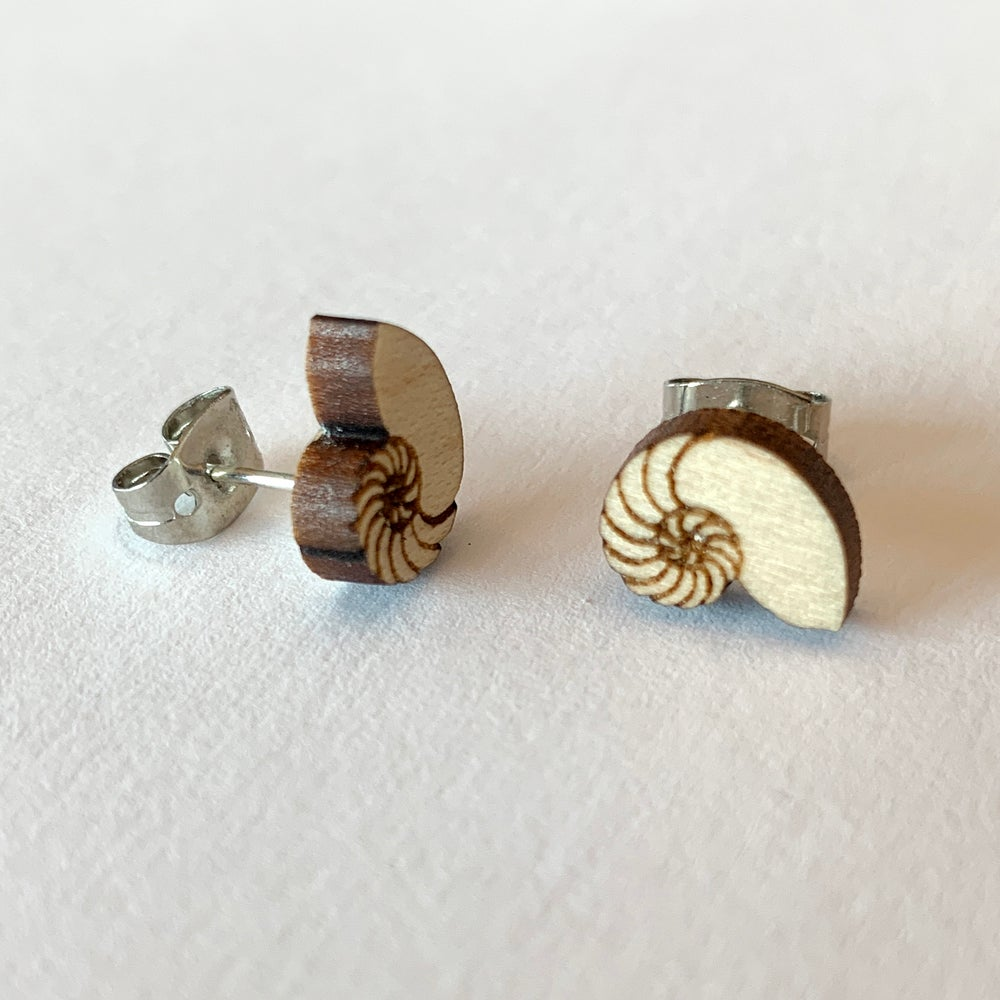 Image of Nautilus Shell Stud Earrings