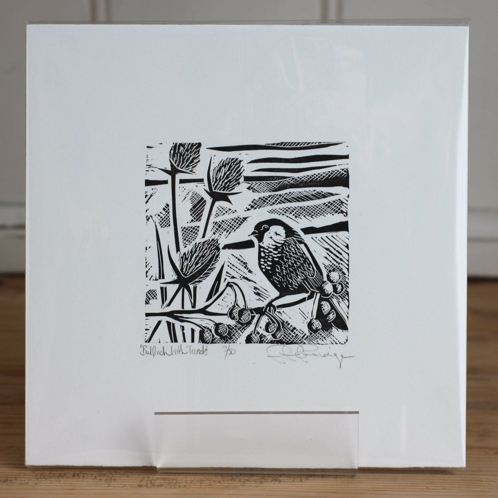 Image of Bulfinch with teasels limited edition monochrome linocut